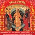 D181mp3_search